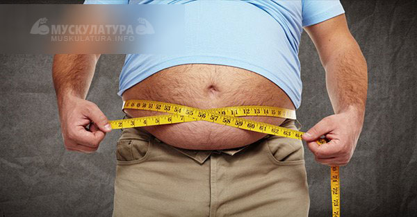 Как убрать живот и бока если нет лишнего веса