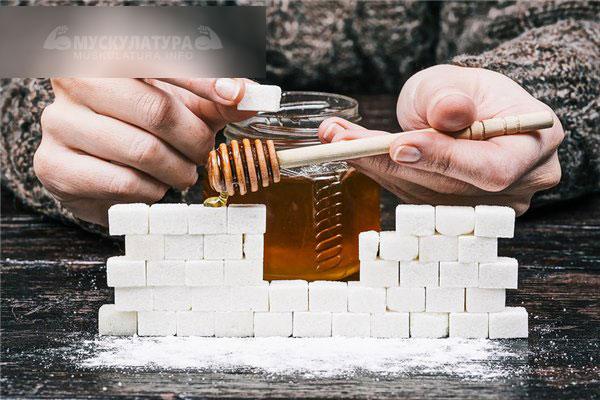 Что полезнее для организма мед или сахар
