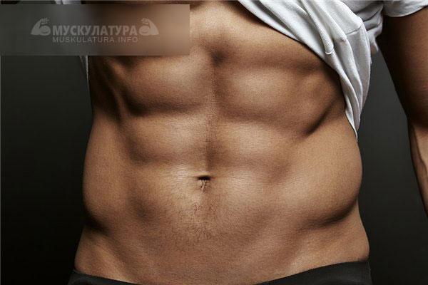 как убрать жир нижней части